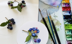 Blueberry watercolor demonstration