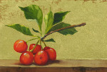 Cherries on Ledge I