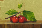 Cherries on Ledge II