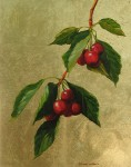 Cherry Branch (with gold leaf)