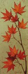 Fall: Japanese Maple (with gold leaf)