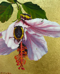 Feast  (Beetles on Hibiscus with gold leaf)