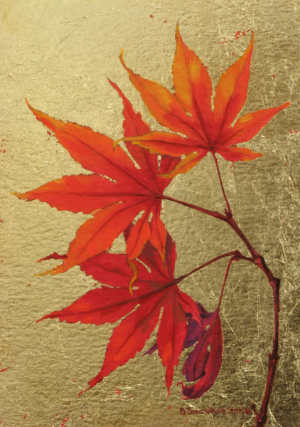 Image gallery japanese maple leaves paintings Japanese maple leaf