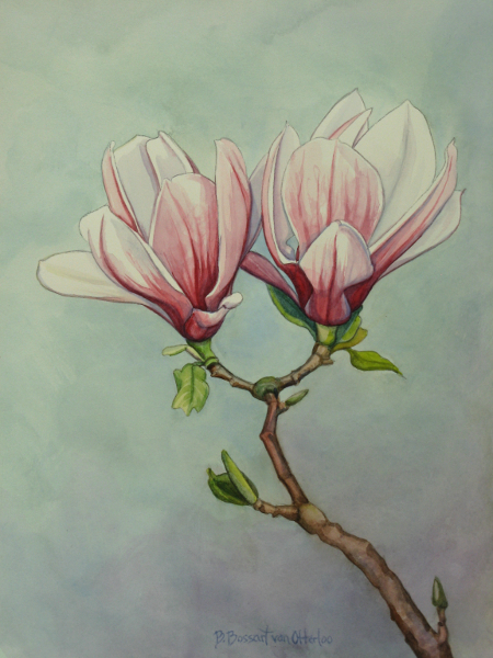 Study for Magnolia Couple